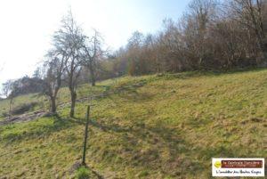 LA BRESSE, Terrain de 1110m² avec vue degagée sur vallée