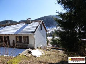 SOUS COMPROMIS DE VENTE ! LA BRESSE! MAISON MITOYENNE avec terrasse, garage et cheminée , située en lisière de foret